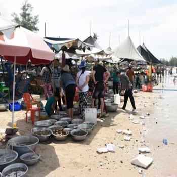 Sẽ có chợ đêm 'xứng tầm' ở khu vực biển Hồ Tràm